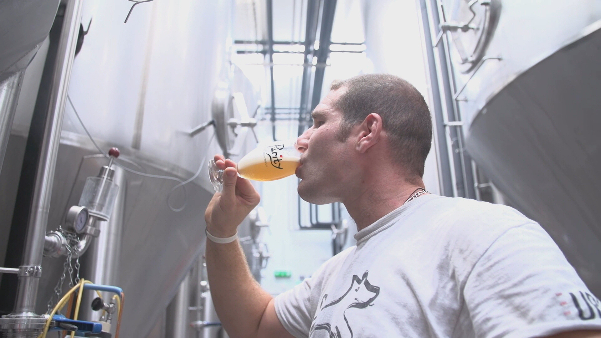 Purity Brewing Co – What's their magic ingredient to success?
